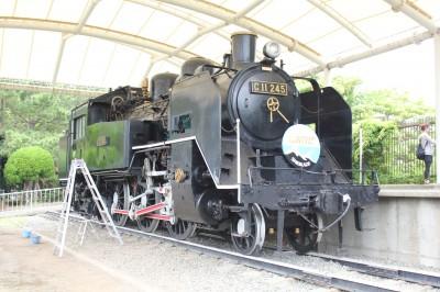 八部公園 蒸気機関車