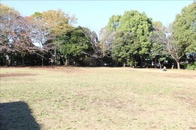鶴亀松公園の芝生の広場