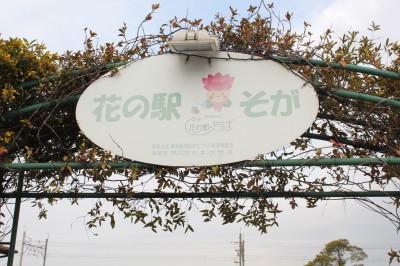 花の駅そが