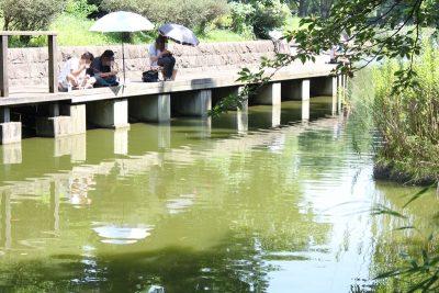 平和の森公園釣り場