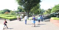 動物園広場