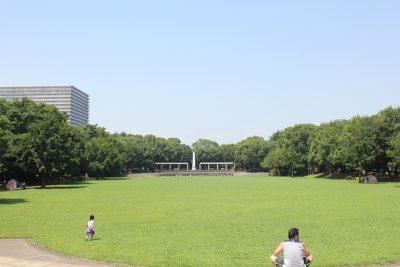 大きな芝生の広場