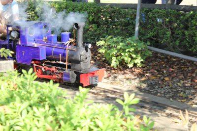 紫のミニ蒸気機関車