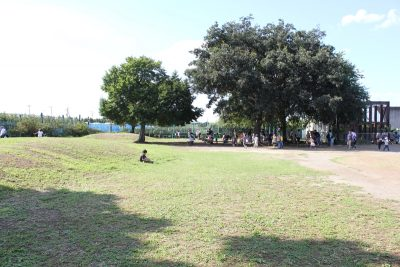 遊具広場と芝生の広場