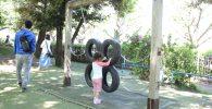タイヤと鎖の遊具