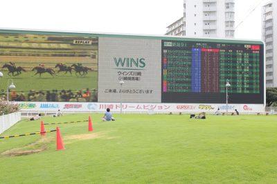 巨大スクリーンの前の芝生の広場