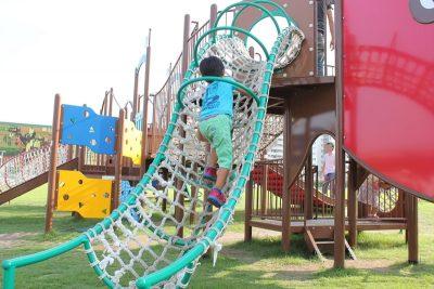川崎競馬場のアスレチックで遊ぶ幼児